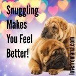 Snuggling Makes You Feel Better