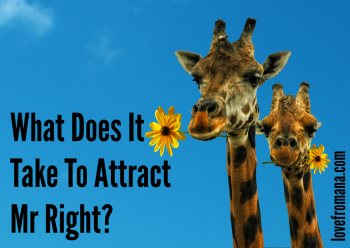 What does it take to attract Mr Right?
